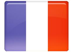 Professzionális francia fordítás